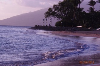 At Cove Park in Kihei