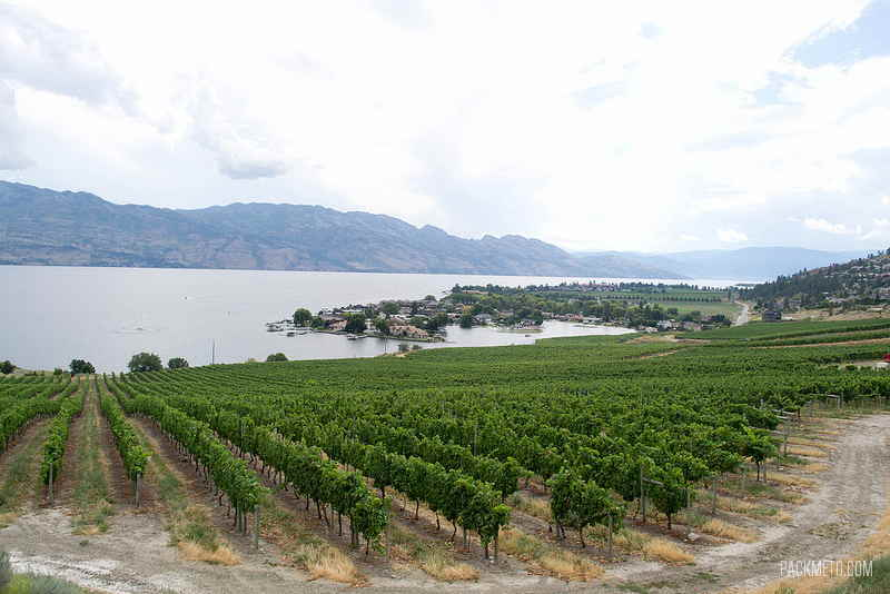 Okanagan - Quails Gate Winery